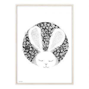 Kanin plakat med håndtegnet motiv | Illustrationer af Katrine Hauerslev